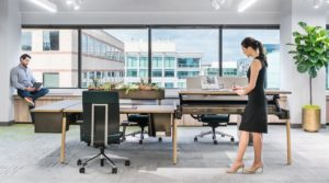 Interior Design Trends For Your Office In 2019